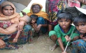 भारत 7 रोंहिग्या शरणार्थियों को भेजेगा वापस म्यांमार