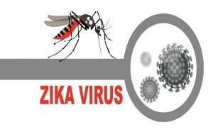 राजस्थान में फैला ज़ीका वायरस, अलर्ट पर बिहार