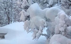 Winter Alert: मौसम ने बदली चाल, पहाड़ों पर गिरी बर्फ