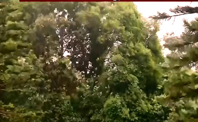 Cyclone Fani : 250 किमी हुई 'फानी' की रफ्तार, चक्रवाती तूफान फानी से सावधान