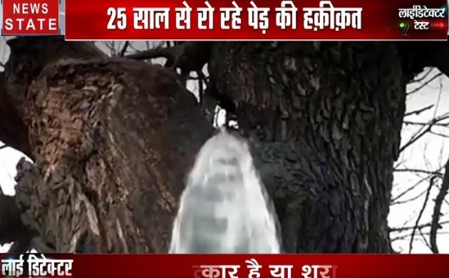 लाईडिटेक्टर टेस्ट : एक पेड़ करीब 25 साल से रो रहा है, सच जानने के लिए देखिए स्पेशल शो