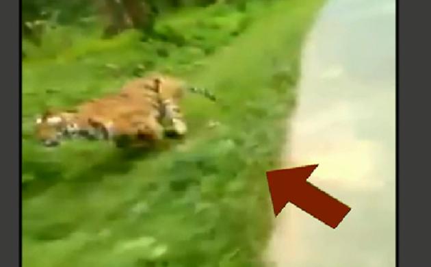 लाई डिटेक्टर टेस्ट : आगे बाइक सवार...पीछे दौड़ी 'मौत' देखिए क्या है इस वीडियो का सच ?
