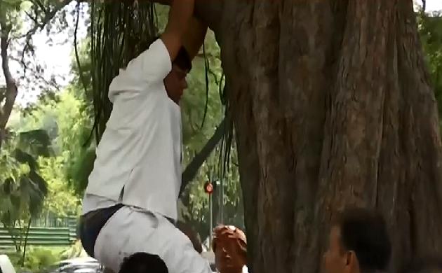 Rahul को मनाने के लिए हाई प्रोफाइल ड्रामा, एक कार्यकर्ता चढ़ा पेड़ पर