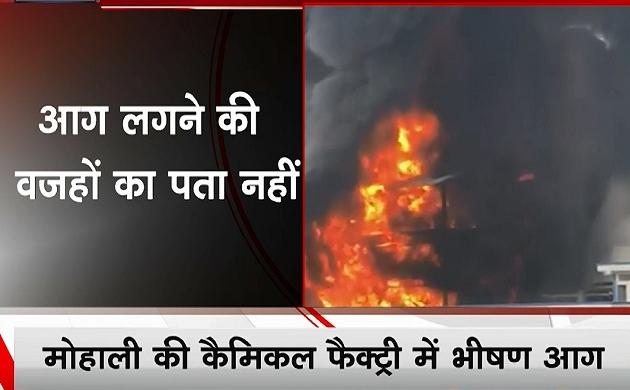 मोहाली - कैमिकल फैक्ट्री में भीषण आग, सब कुछ जलकर हुआ राख, देखें वीडियो