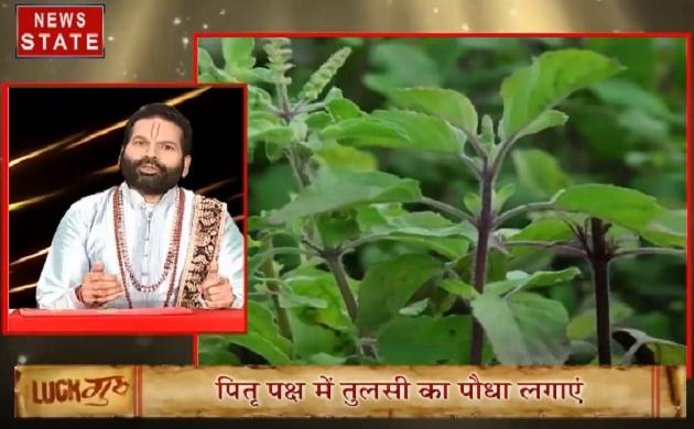 Luck Guru: 27 सितंबर का राशिफल, साथ ही जानें कौन से पेड़ बना सकते हैं आपको धनवान