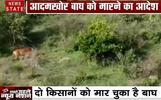 कर्नाटक में आदमखोर बाघ को मारने का आदेश हुआ जारी, देखिए ये Video