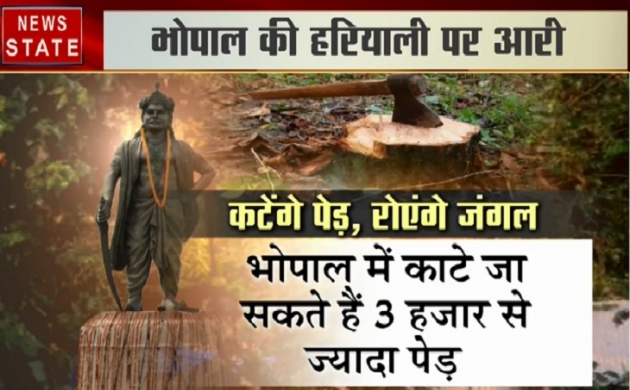 भोपाल की हरियाली को लगी किसकी नजर, पिछले 10 सालों में क्यों काटे गए 40 फीसदी पेड़