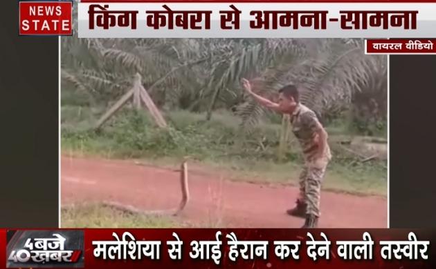 जवान कैसे किंग कोबरा से खेल रहा है, देखिए ये हैरान कर देने वाला VIDEO