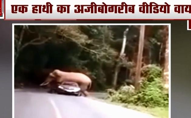 CCTV Videos: थाईलैंड में कार पर सवार हाथी, बेकाबू कार ने चार साल की बच्ची को रौंदा, देखें वायरल वीडियो