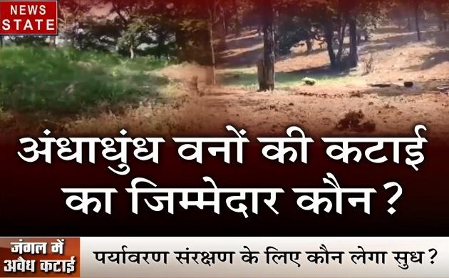 Madhya pradesh:  सिंगरौली- अंधाधुंध वनों की कटाई का जिम्मेदार कौन, देखें खास रिपोर्ट