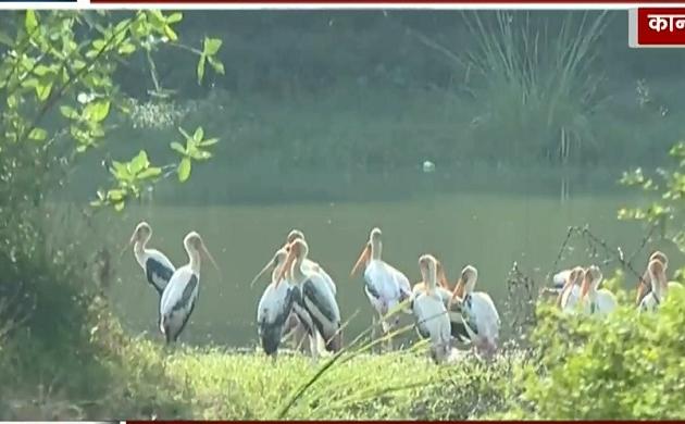 UP: कानपुर चिड़ियाघर से खूबसूरत विदेशी पक्षी नदारद, इंसानो के साथ परिंदो पर भी पड़ा प्रदूषण का असर