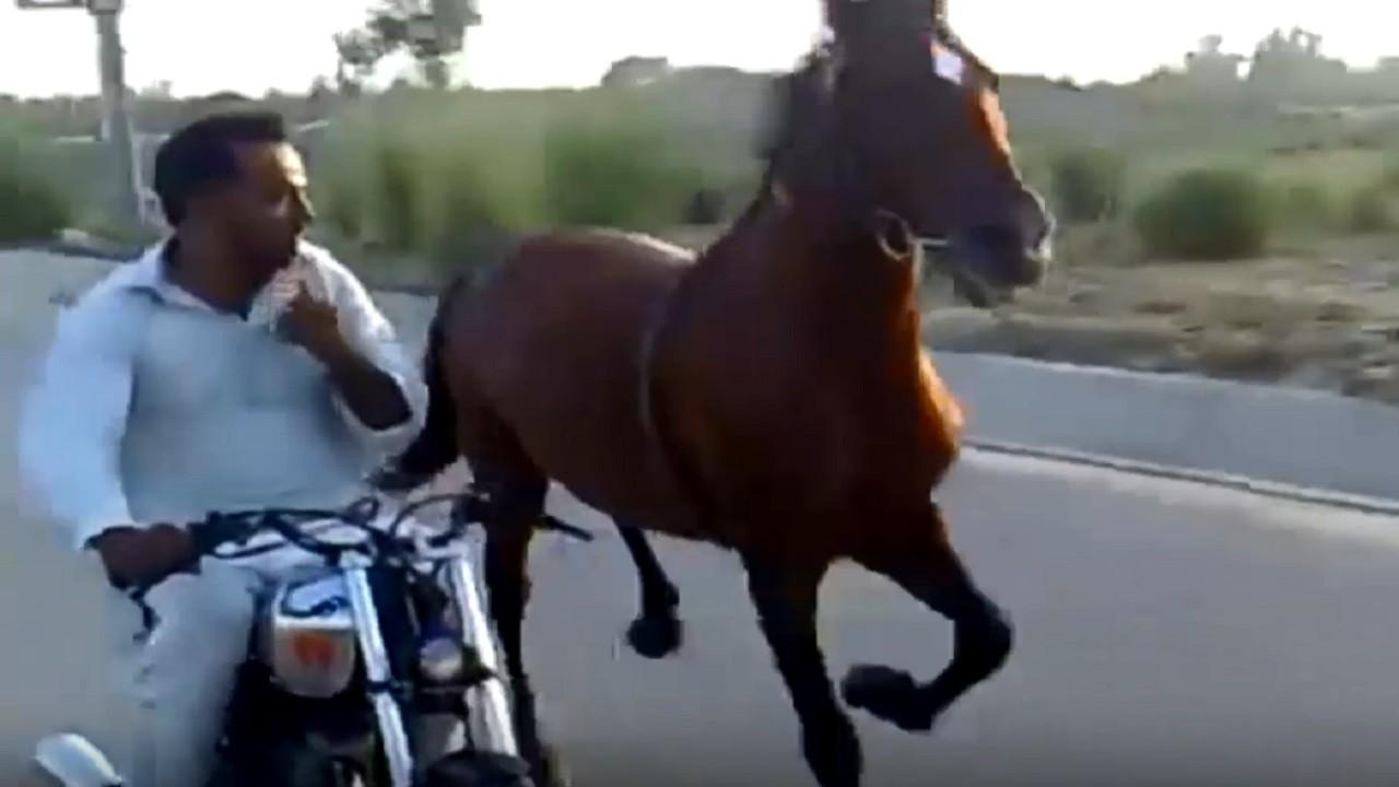 ...जब लगी बाइक और घोड़े की रेस